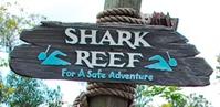 Typhoon-lagoon-shark-reef